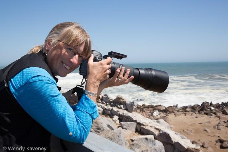 Portfolio Review with Brenda Tharp
